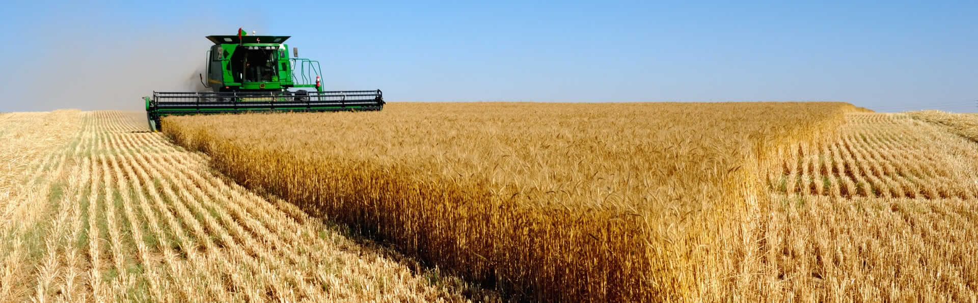 Como valorizar a parceria com o fornecedor de cabos agrícolas