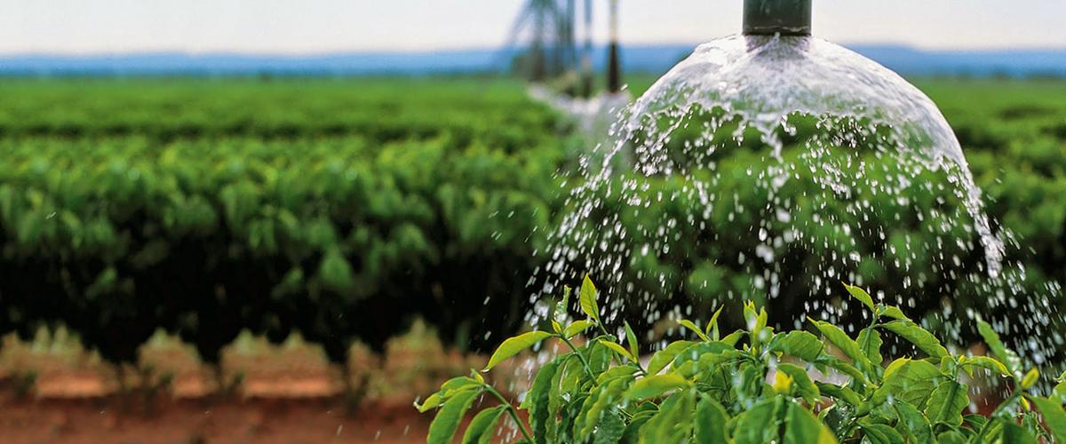 Sistema-promete-evitar-desperdício-água-lavouras